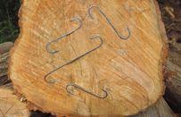 Middelen tegen opscheuren van hout