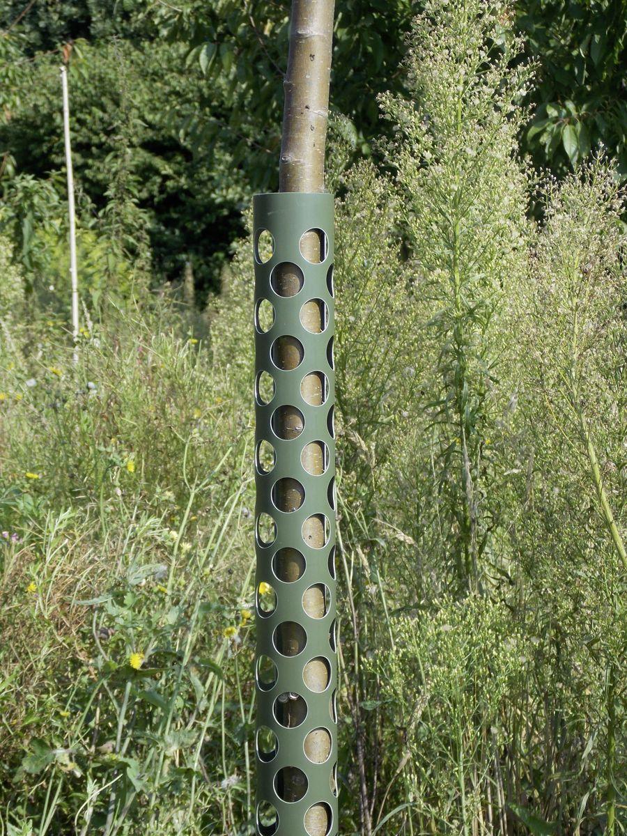 Plantagard boombeschermers 80 cm (1x)