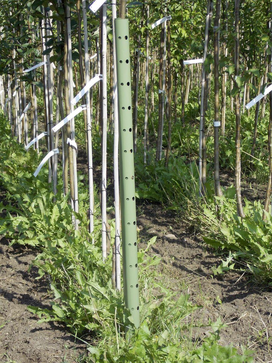 Plantagard boombeschermers 70cm (100x)